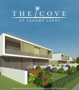 The Cove Agave